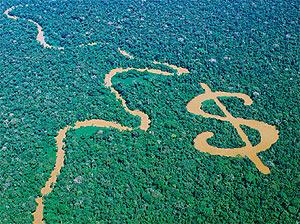 Pacto Ecológico Europeu: nem verde, nem ecológico, nem europeu
